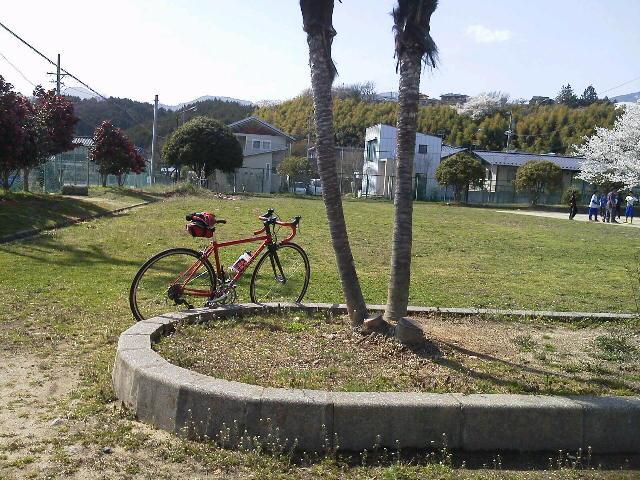 ちびさる♂とサイクリング